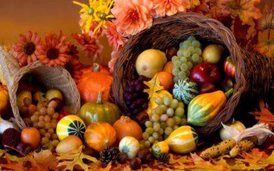 Love. Gratitude. Sincere Thanks. Thanksgiving